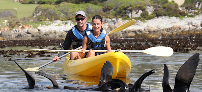 Kennedy's Beach Villa Hermanus activities